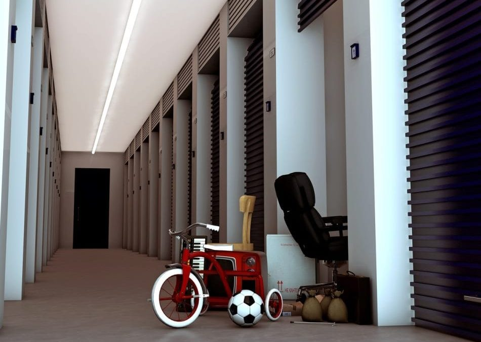 Top Reasons Why People Use Storage Service Units